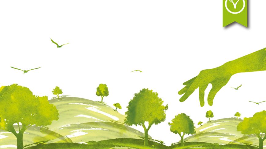 Gestión Ambiental Territorial